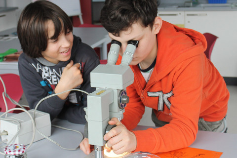 Mikroskopieren im MNT-Bereich