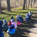 Wir suchen und finden Frühblüher