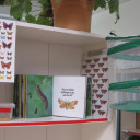 Artenvielfalt Projekt 3