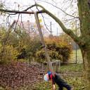 BiLLY_Gartenprojekt_ entspannt aushängen im Schwabenhaus _11_2017