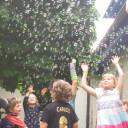 Schwabenhaus_ Kindertag_2018_ Fasziniernde Seifenblasenwolke