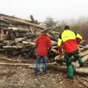 Gartenprojekt 2.1.:Holzholen auf dem Jenaer Forst