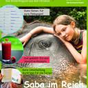 SteinMalEins_Paradies_KIndermagazin_SteinZeit_Ausgabe Juni 2017