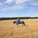 PJ Herausforderung 2017: Tami verbrachte die drei Wochen auf einem Reiterhof.