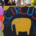 Zirkusschild